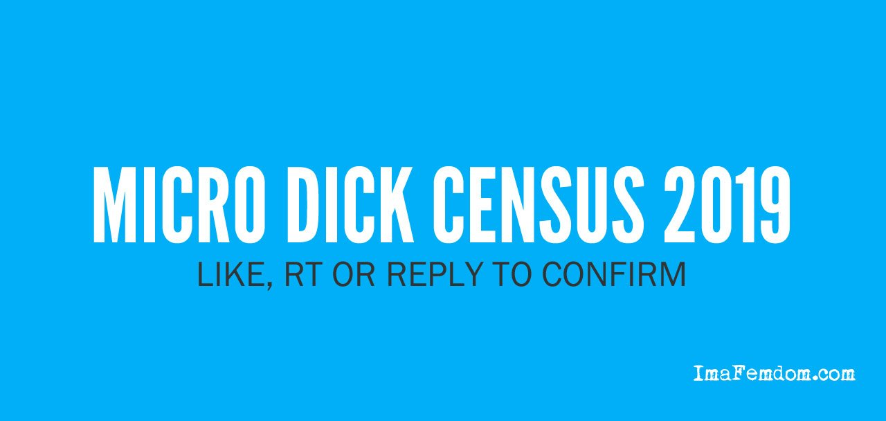 Micro Dick Census 2019