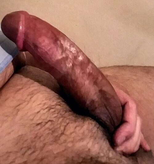 Give my hard penis a rate in the comments