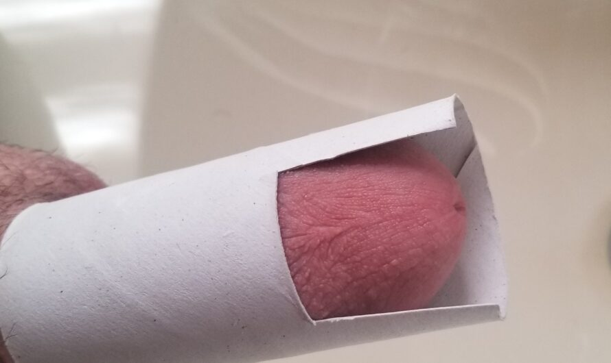 Ryan's 4 inch hard beta dick doing the Toilet Paper Roll Test