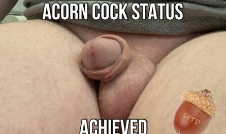 ACORN COCK STATUS ACHIEVED