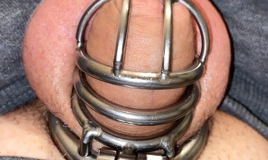 Small dicks get chastity