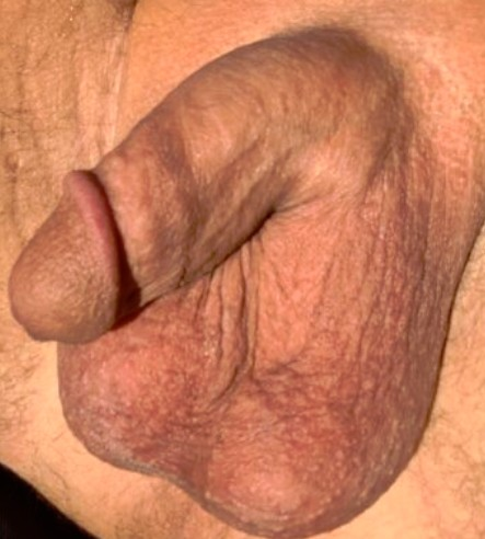 My small soft cock completely shaved