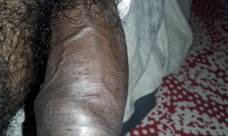 Hairy small Indian dick