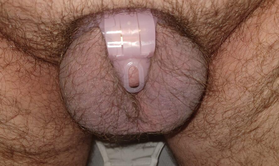 His locked up nub of cuckold dick